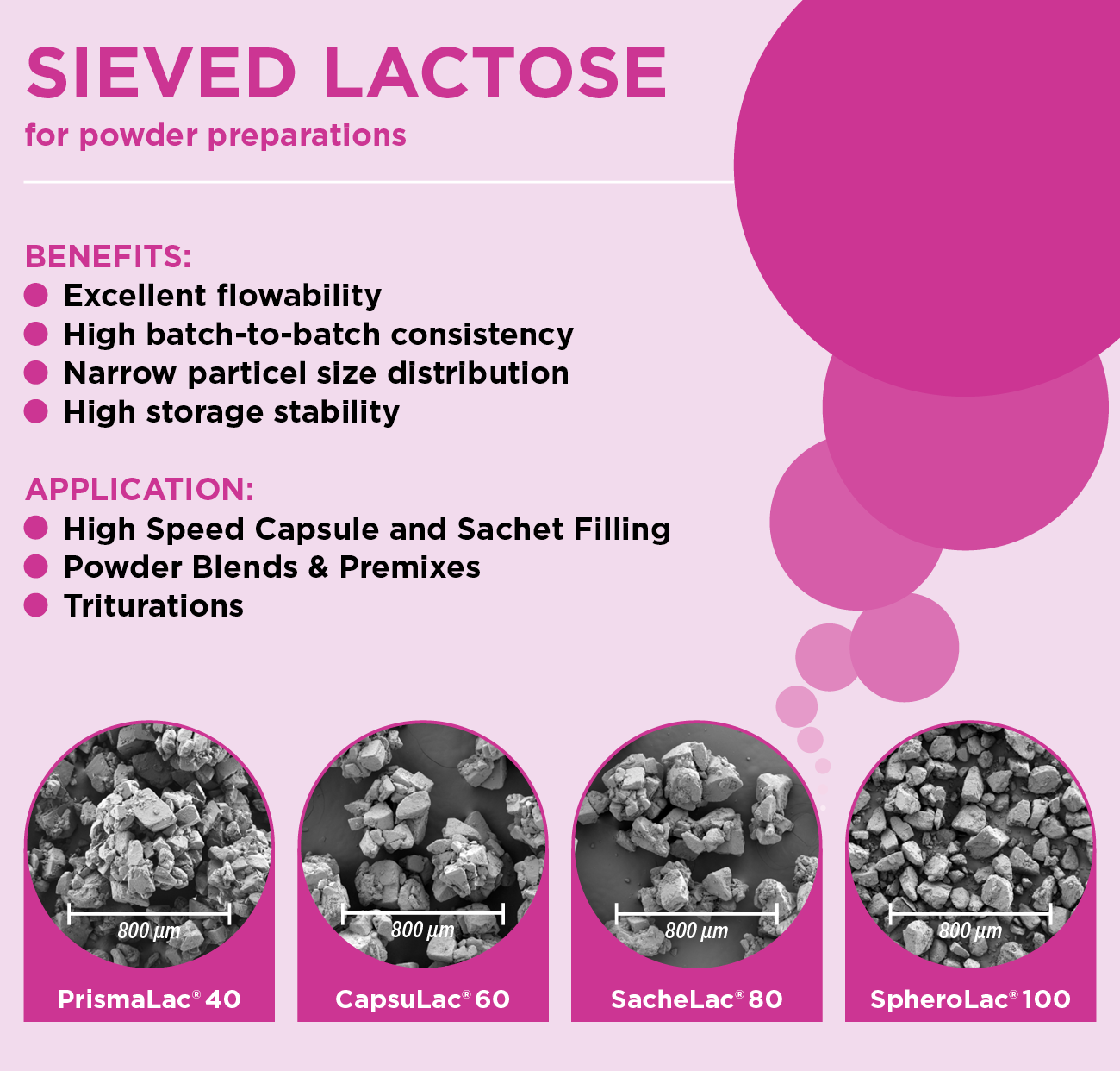 Sieved Lactose - Powder Preparations - Excipients from MEGGLE